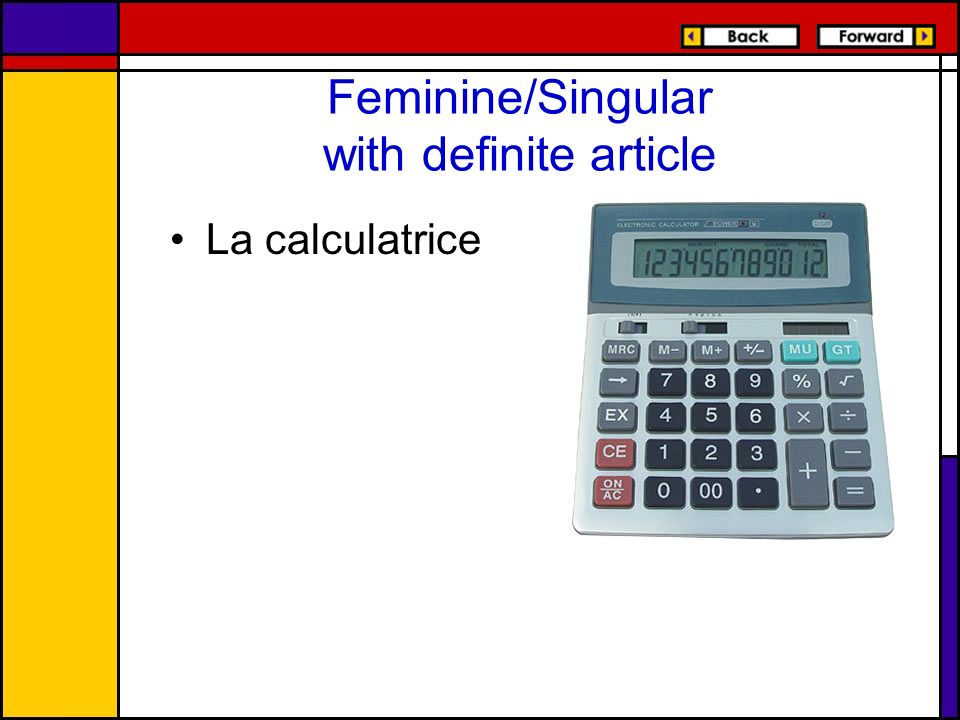 Feminine/Singular with definite article