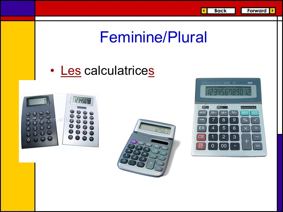Feminine/Plural Les calculatrices