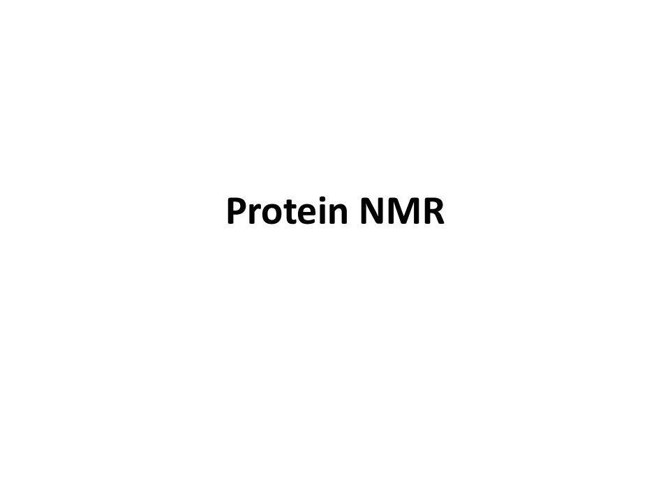 Protein NMR