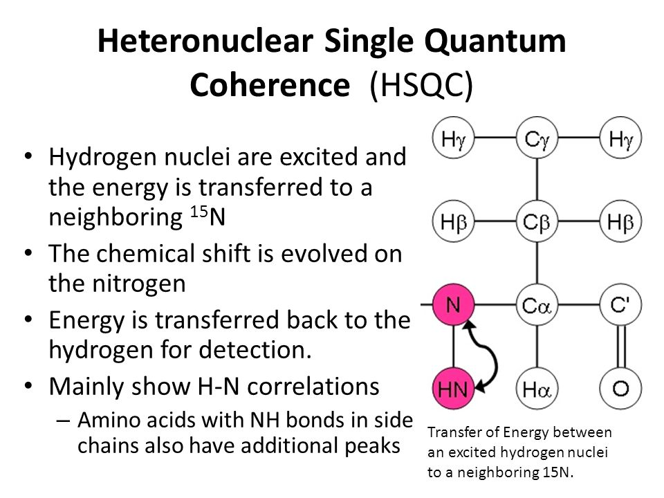 Heteronuclear Single Quantum Coherence (HSQC)