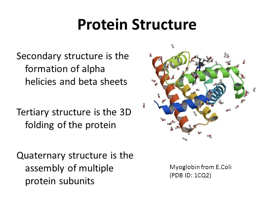 Protein Structure Secondary structure is the formation of alpha helicies and beta sheets. Tertiary structure is the 3D folding of the protein.
