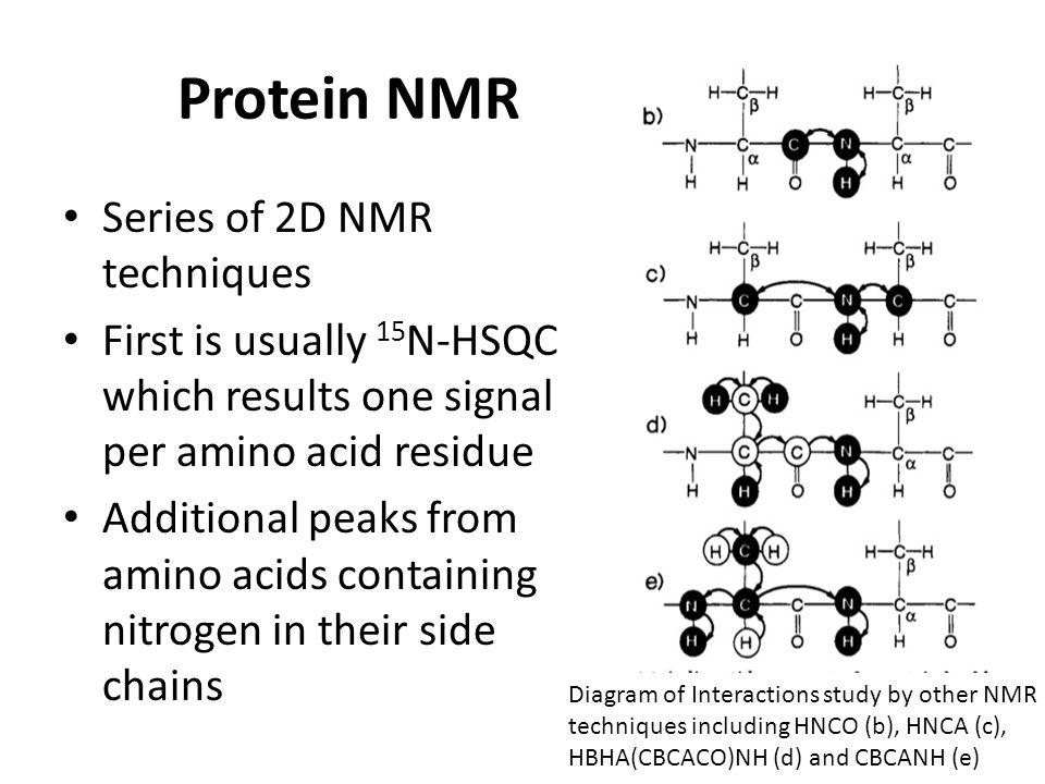 Protein NMR Series of 2D NMR techniques