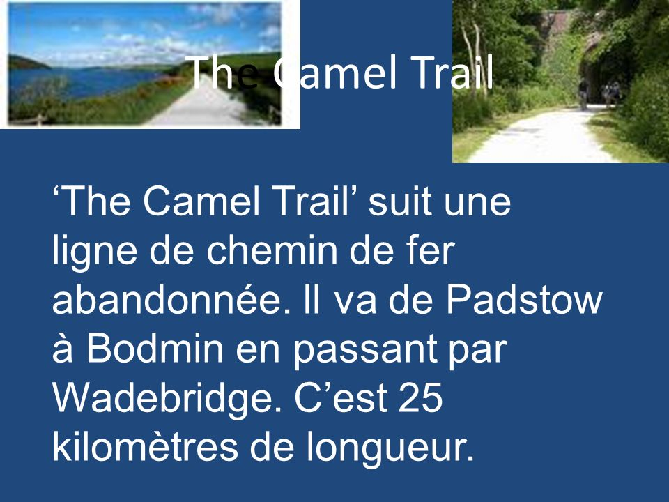 The Camel Trail