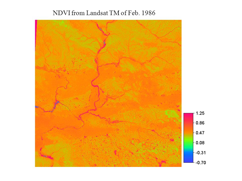 NDVI from Landsat TM of Feb. 1986