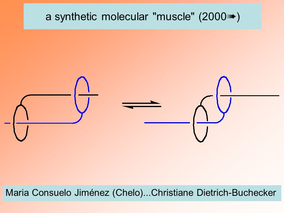 a synthetic molecular muscle (2000➠)