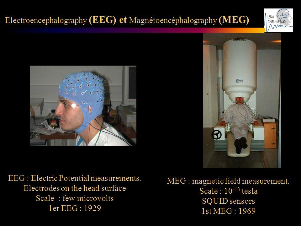 Electroencephalography (EEG) et Magnétoencéphalography (MEG)