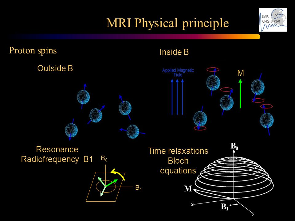 MRI Physical principle