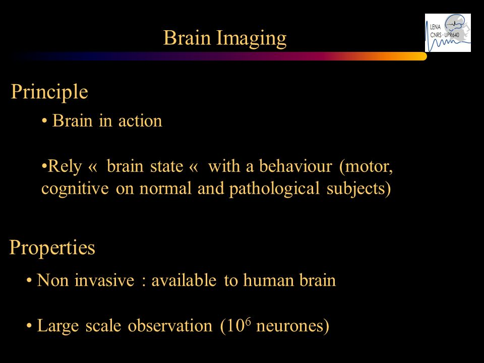 Brain Imaging Principle Properties Brain in action