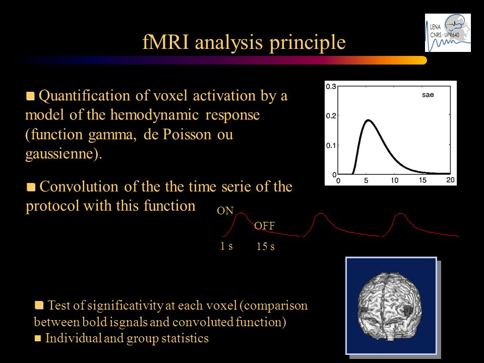 fMRI analysis principle