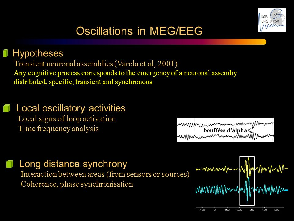 Oscillations in MEG/EEG