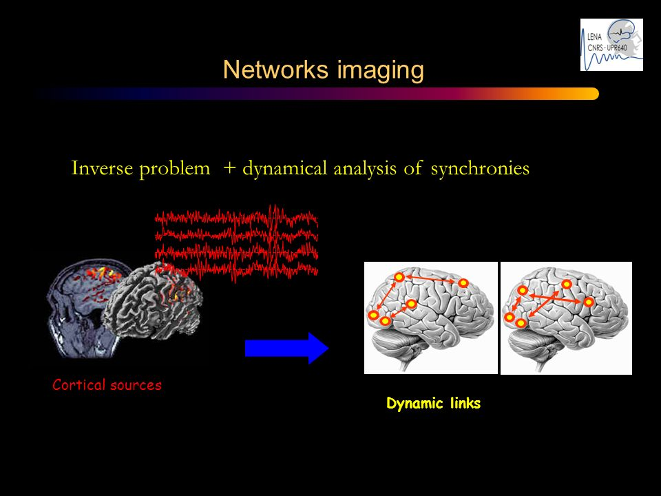 Inverse problem + dynamical analysis of synchronies