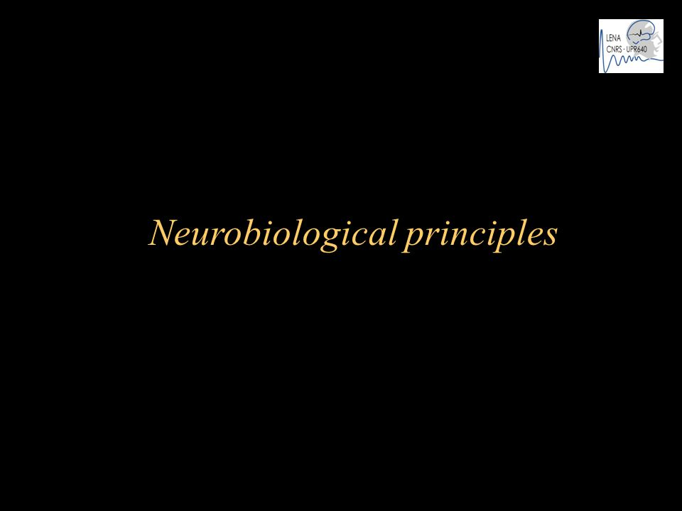 Neurobiological principles
