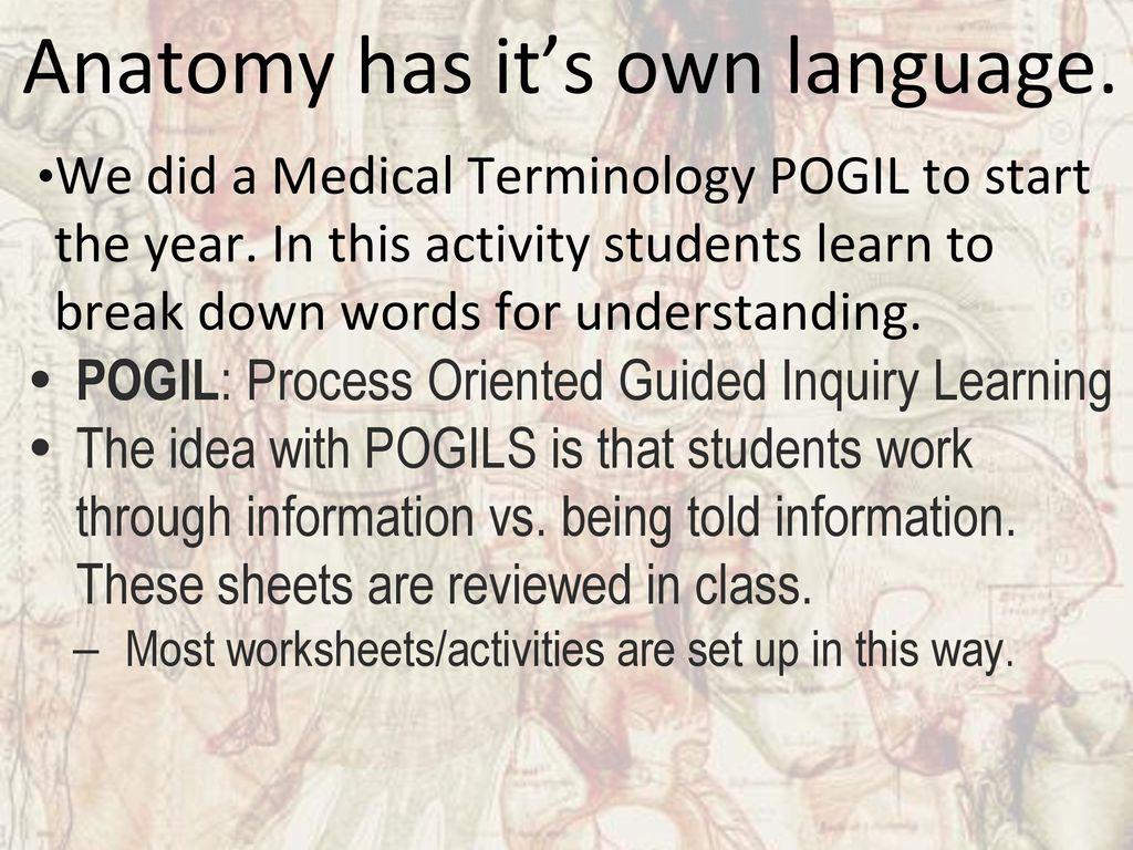 Ungewöhnlich Pogil Anatomy And Physiology Ideen - Menschliche ...