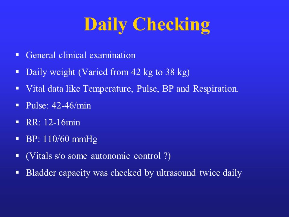 Daily Checking General clinical examination