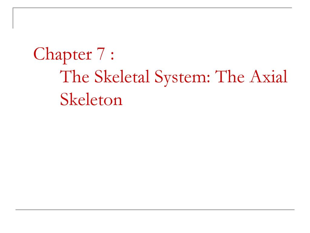 Beste Anatomy And Physiology Chapter 7 Skeletal System ...