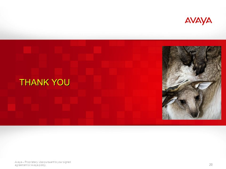THANK YOU 20 20 2010 Avaya Inc. All rights reserved. 20