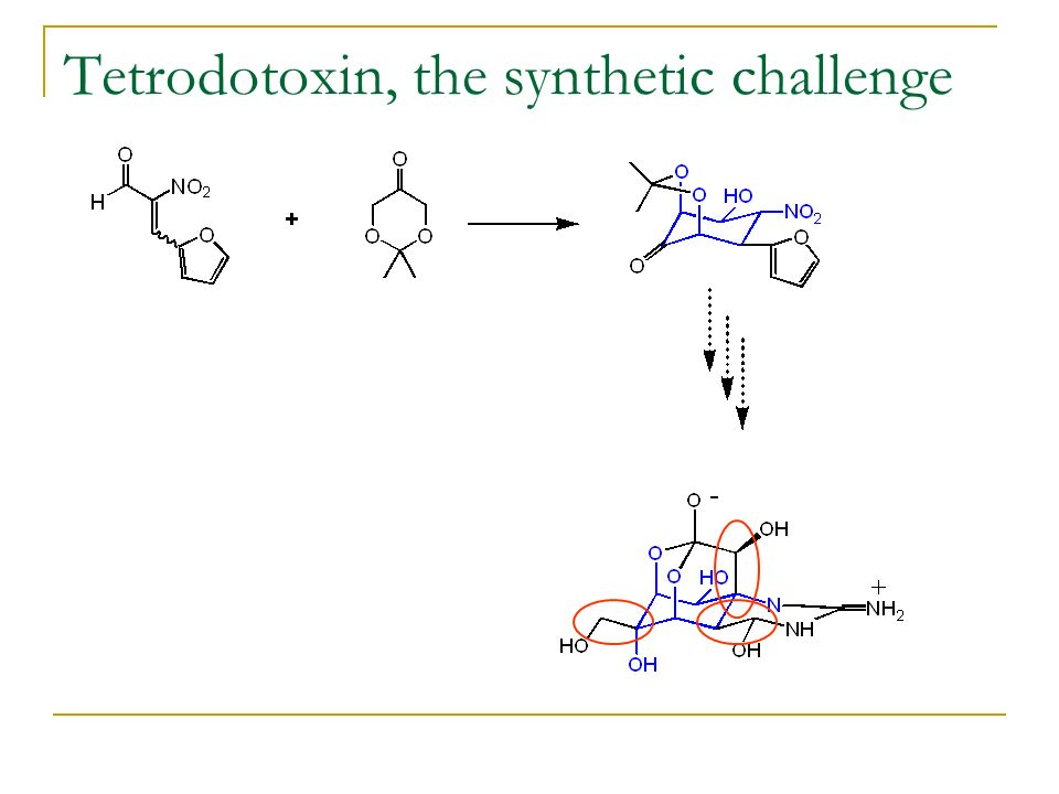 Tetrodotoxin, the synthetic challenge
