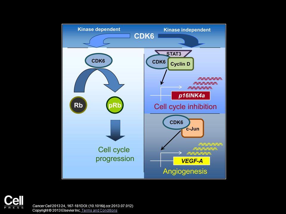 Cancer Cell 2013 24, 167-181DOI: (10.1016/j.ccr.2013.07.012)