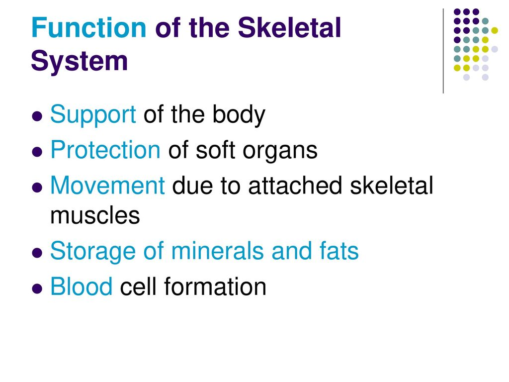 Modern Anatomy And Physiology Chapter 5 Study Guide Answers Ideas ...