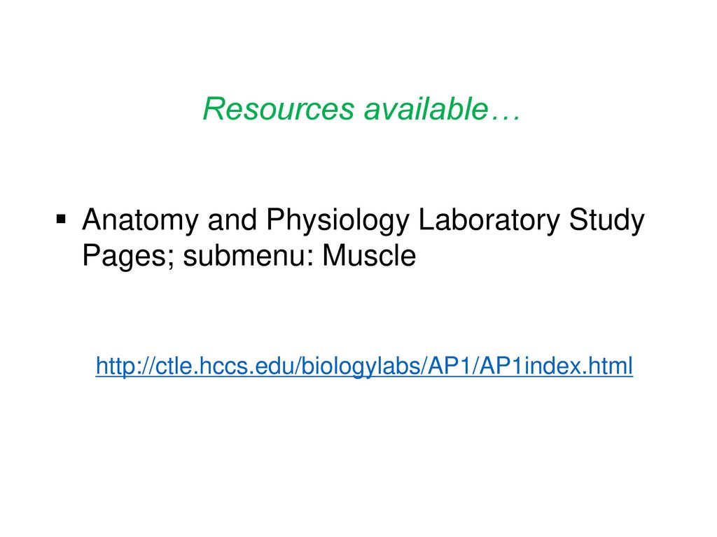 Contemporary Hcc Anatomy And Physiology Lab Image Collection ...