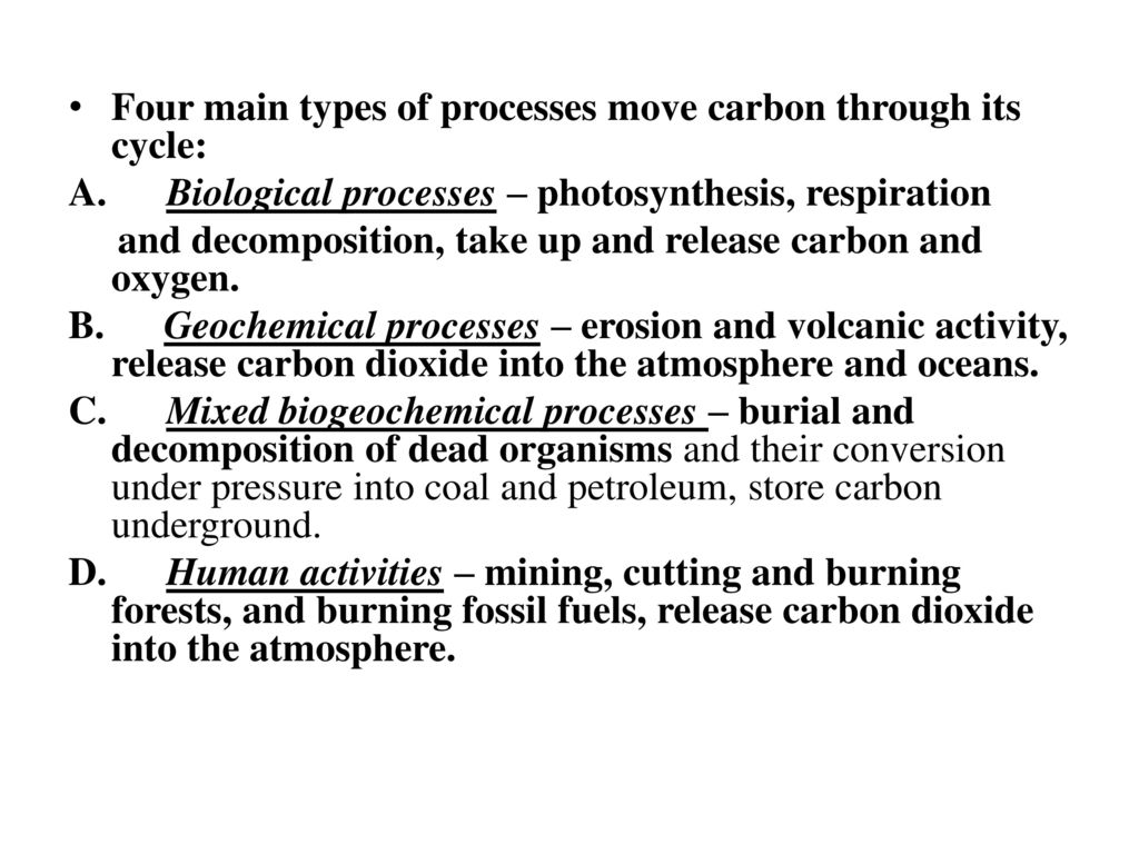 Four main types of processes move carbon through its cycle: