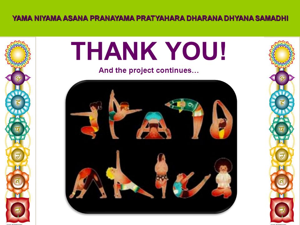THANK YOU! And the project continues…