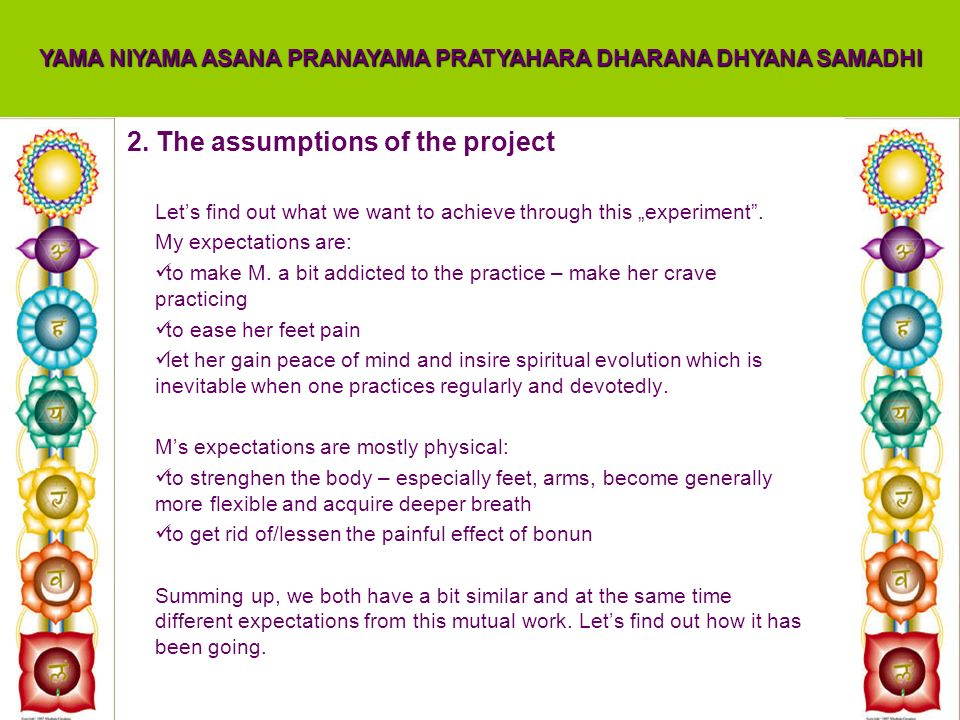 2. The assumptions of the project