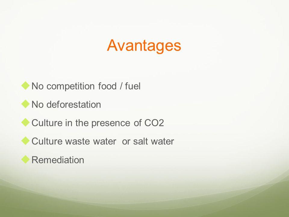 Avantages No competition food / fuel No deforestation