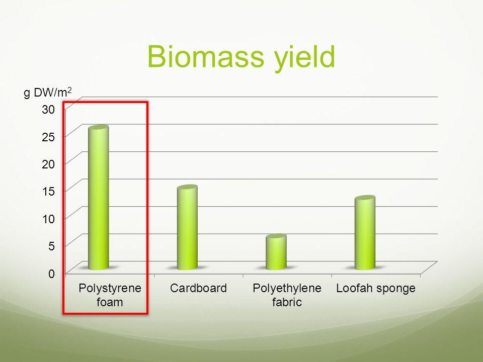 Biomass yield g DW/m2