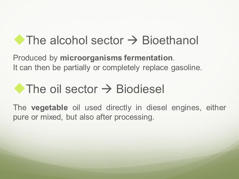 The alcohol sector  Bioethanol