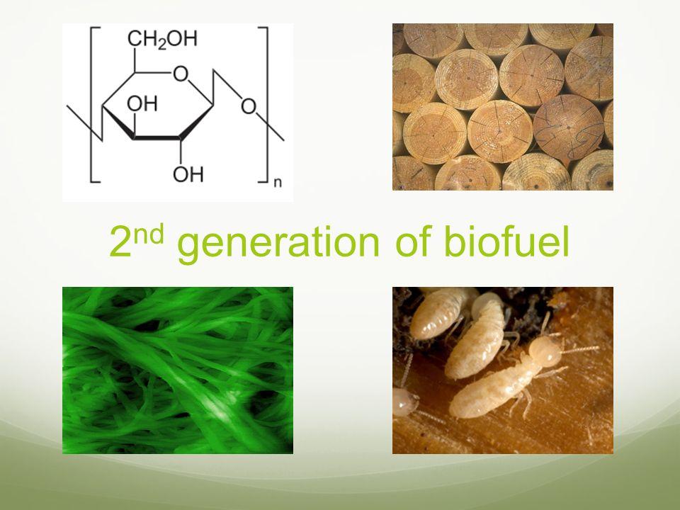 2nd generation of biofuel
