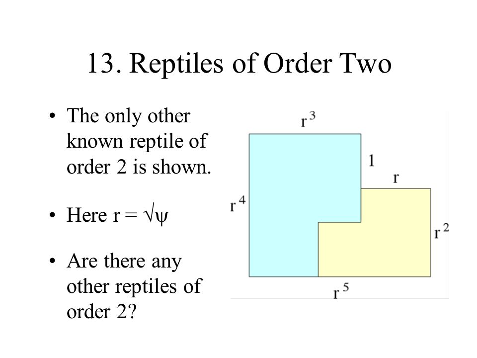 13. Reptiles of Order Two The only other known reptile of order 2 is shown.