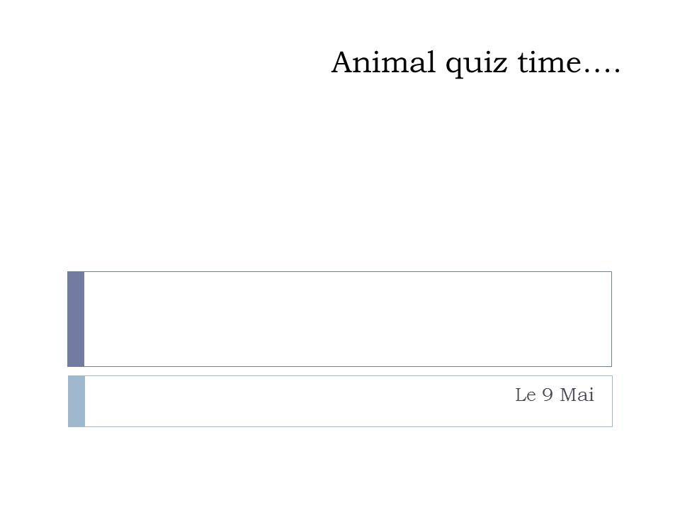Animal Quiz Time Le 9 Mai Ppt Video Online Download