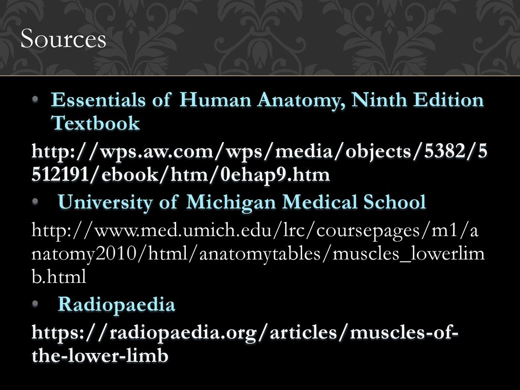 Amazing Human Anatomy And Physiology Ninth Edition Motif ...
