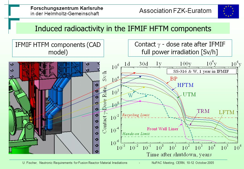 Induced radioactivity in the IFMIF HFTM components