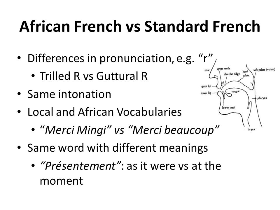 African French vs Standard French