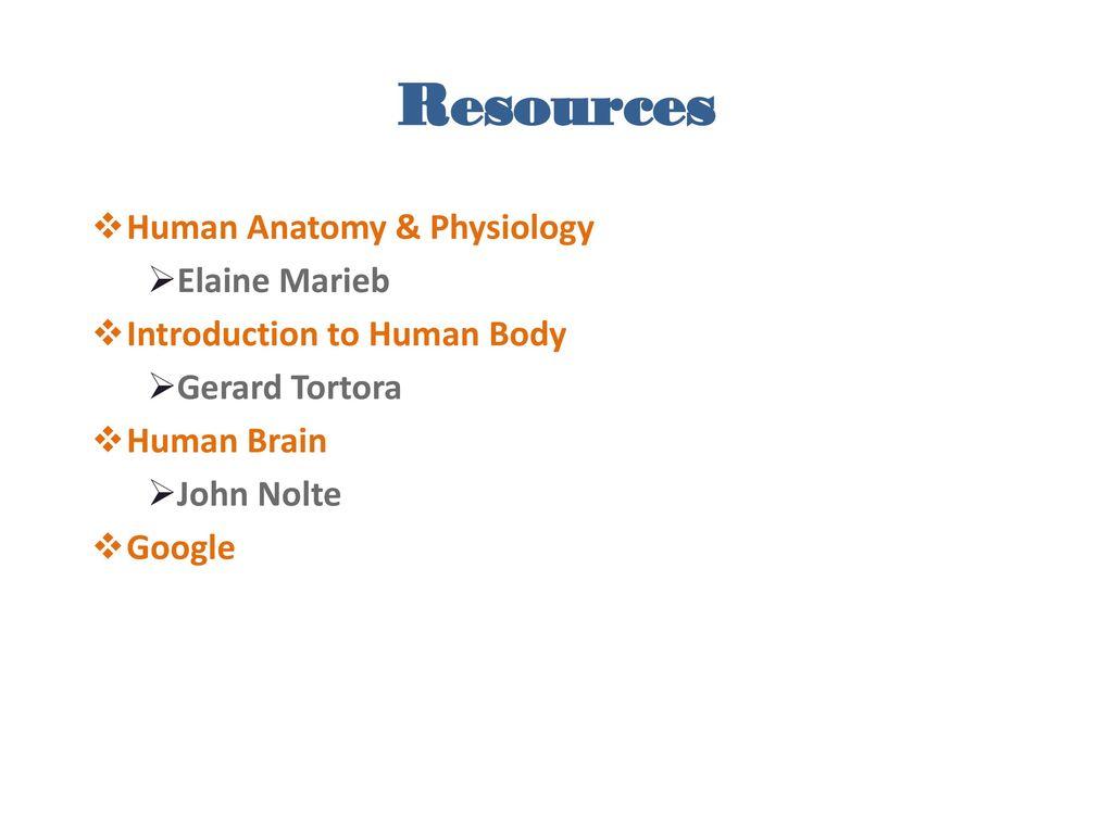 Colorful Anatomy And Physiology Gerard Tortora Gallery - Human ...