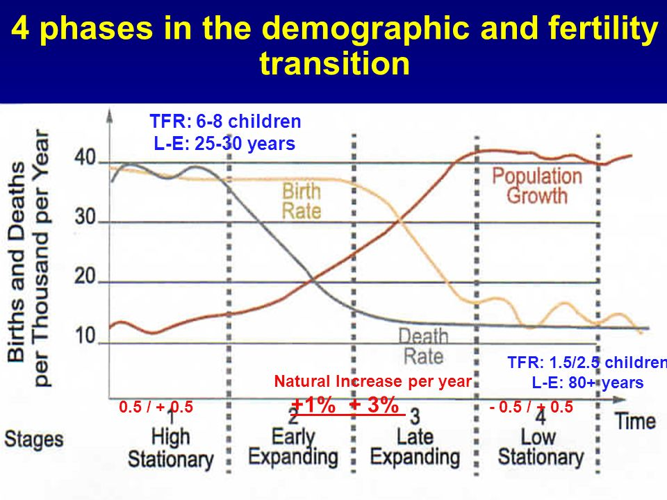 4 phases in the demographic and fertility transition