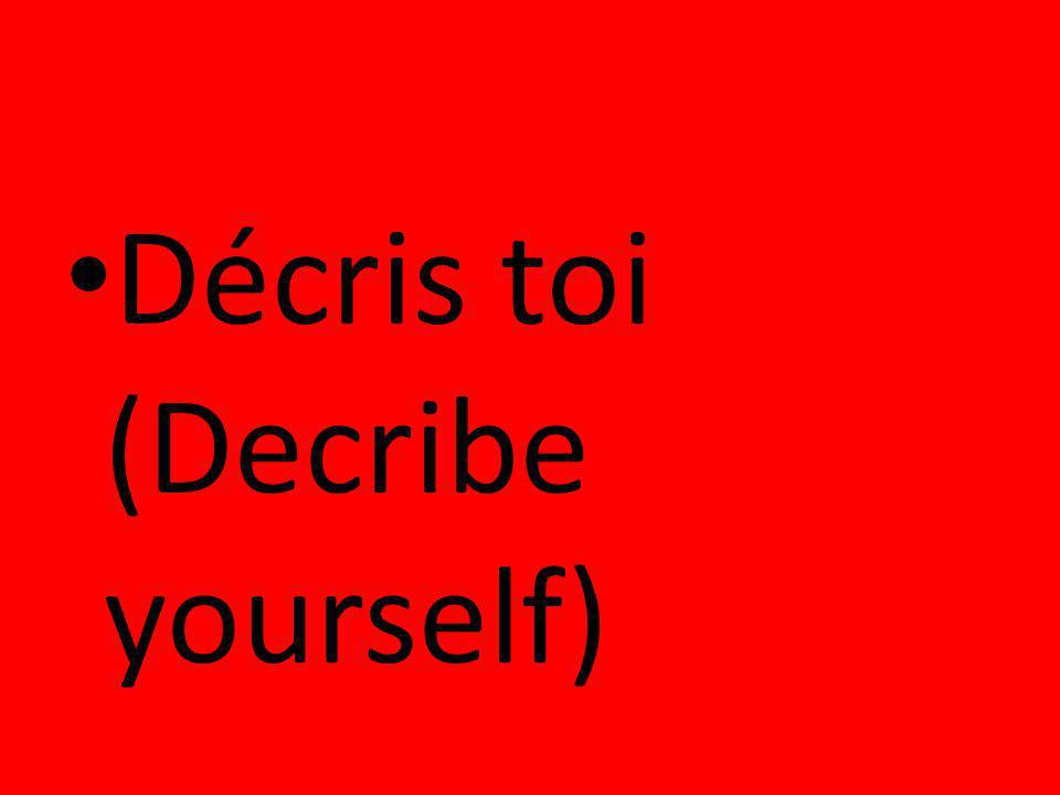 Décris toi (Decribe yourself)