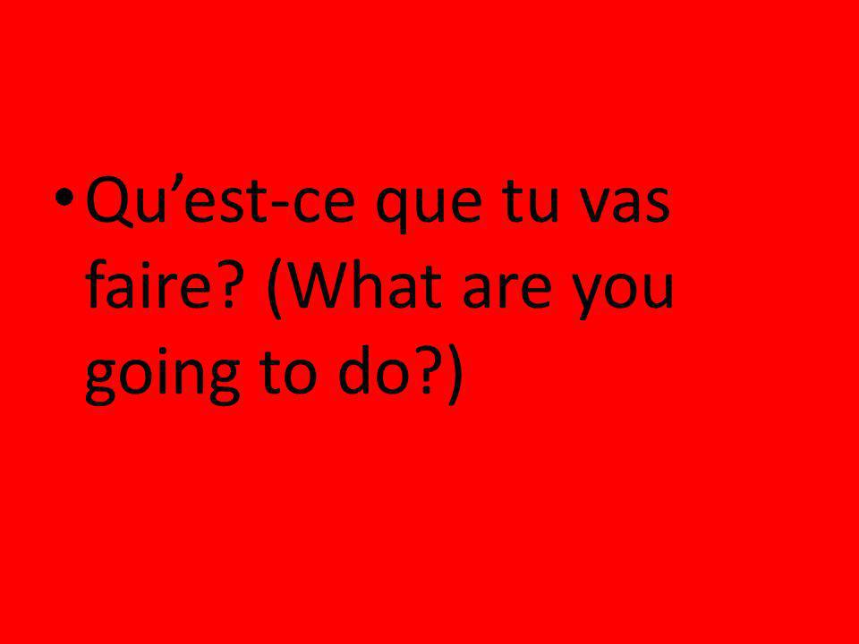 Qu'est-ce que tu vas faire (What are you going to do )