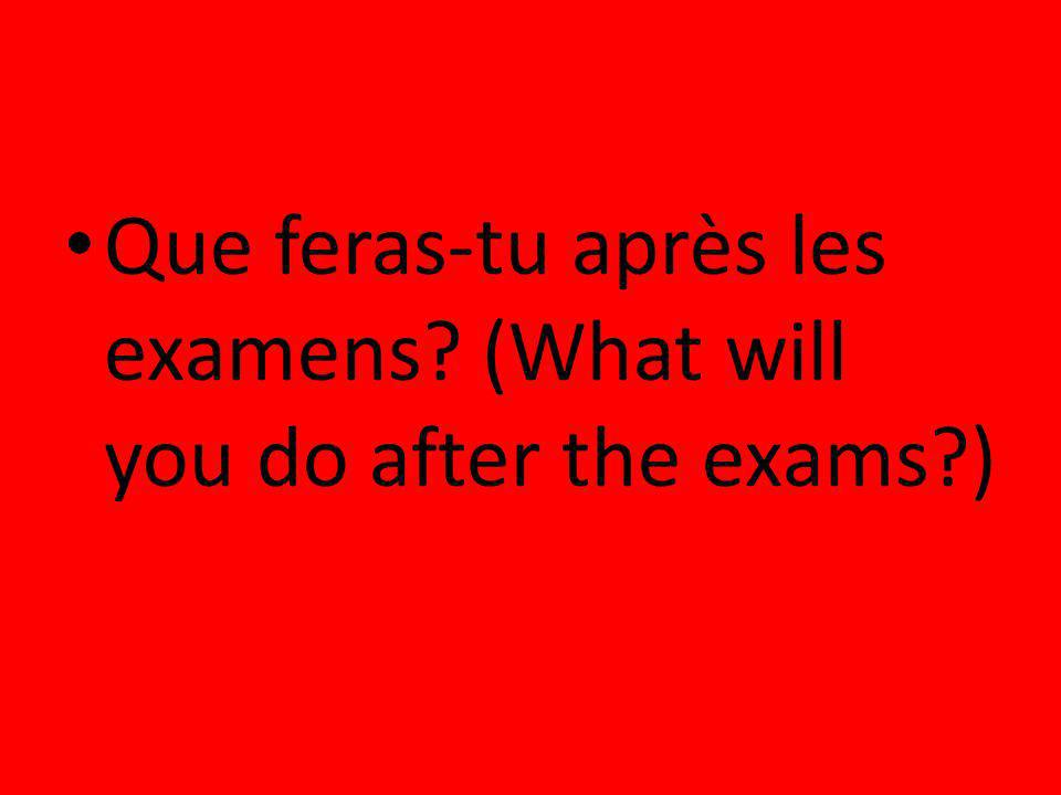 Que feras-tu après les examens (What will you do after the exams )