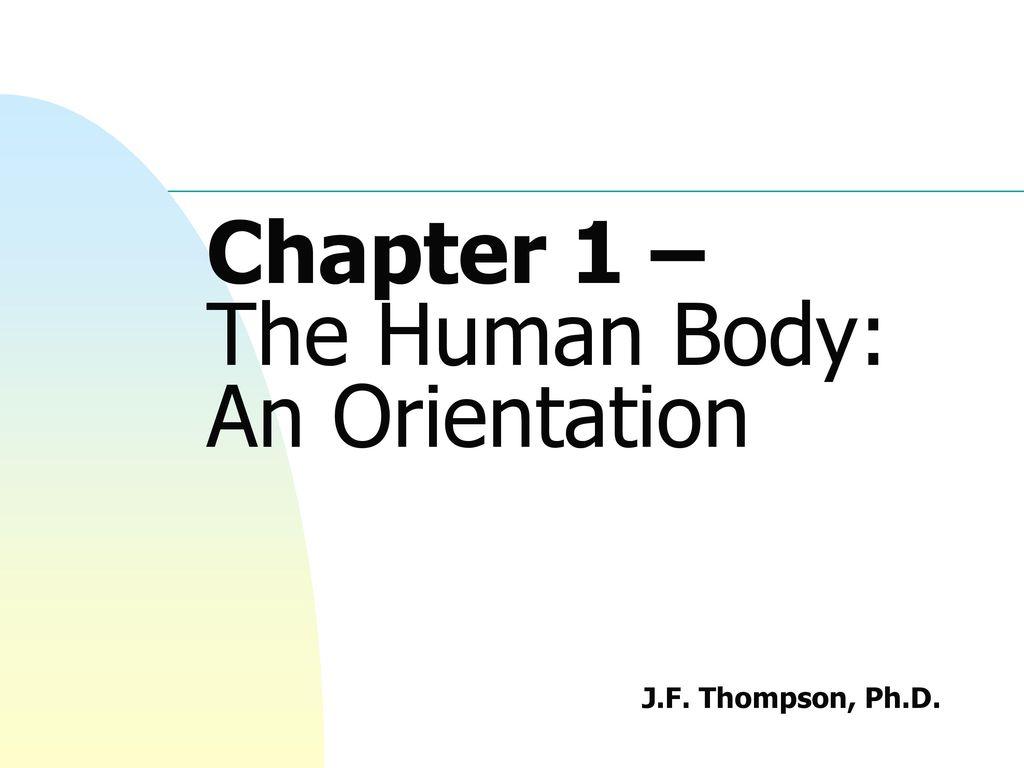Schön Anatomy And Physiology Chapter 1 Flashcards Bilder ...