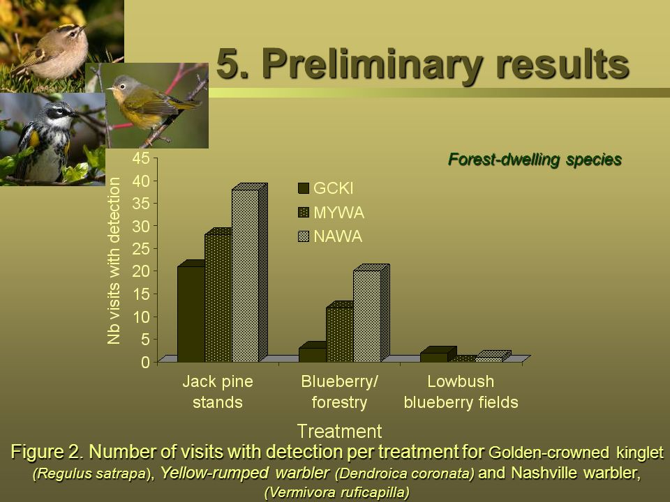 5. Preliminary results Forest-dwelling species.