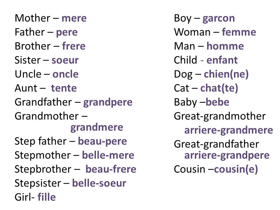 Mother – mere Father – pere Brother – frere Sister – soeur Uncle – oncle Aunt – tente Grandfather – grandpere Grandmother – grandmere Step father – beau-pere Stepmother – belle-mere Stepbrother – beau-frere Stepsister – belle-soeur Girl- fille Boy – garcon Woman – femme Man – homme Child - enfant Dog – chien(ne) Cat – chat(te) Baby –bebe Great-grandmother arriere-grandmere Great-grandfather arriere-grandpere Cousin –cousin(e)