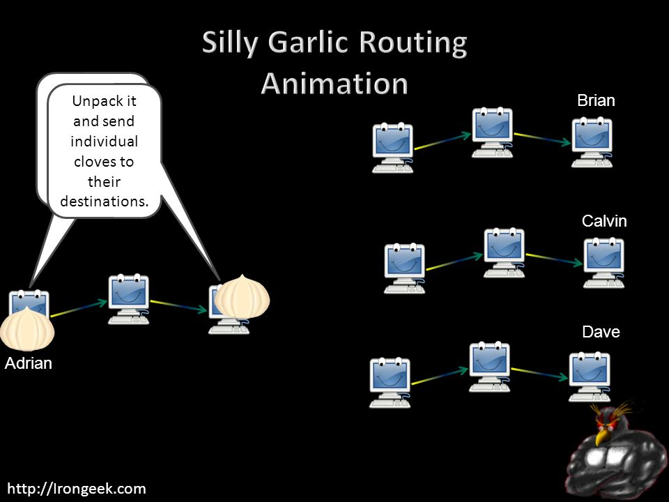 Silly Garlic Routing Animation