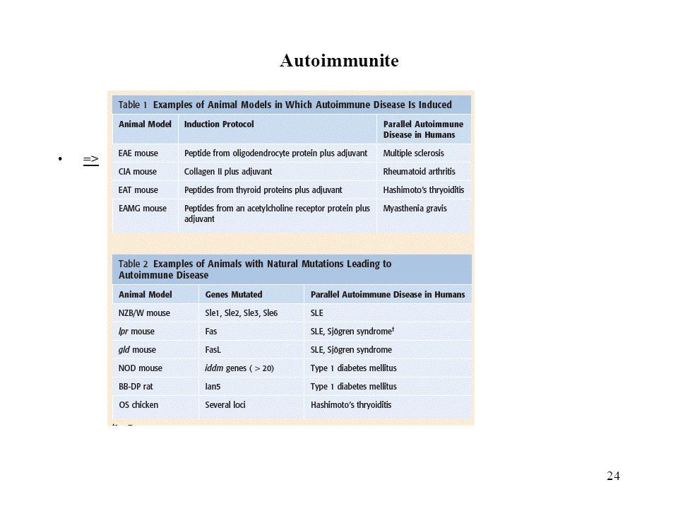 Autoimmunite =>