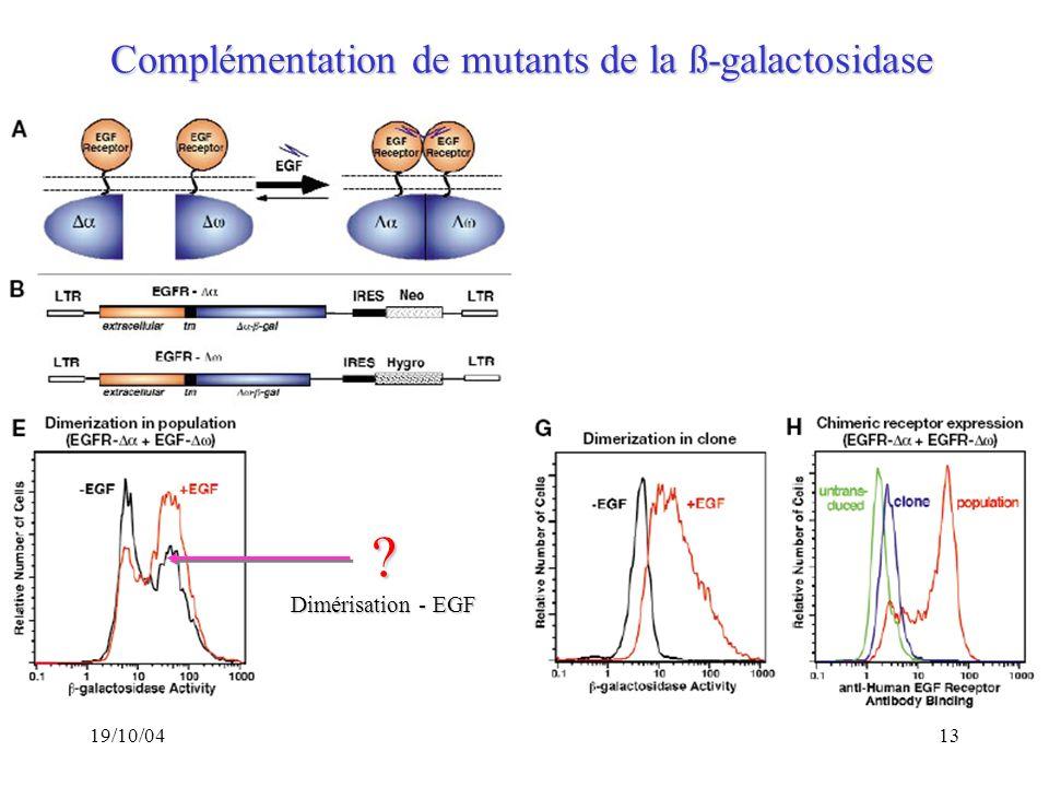 Complémentation de mutants de la ß-galactosidase Dimérisation - EGF