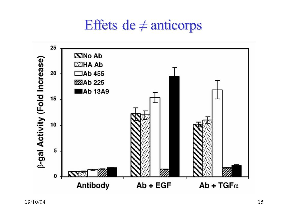 Effets de ≠ anticorps 19/10/04