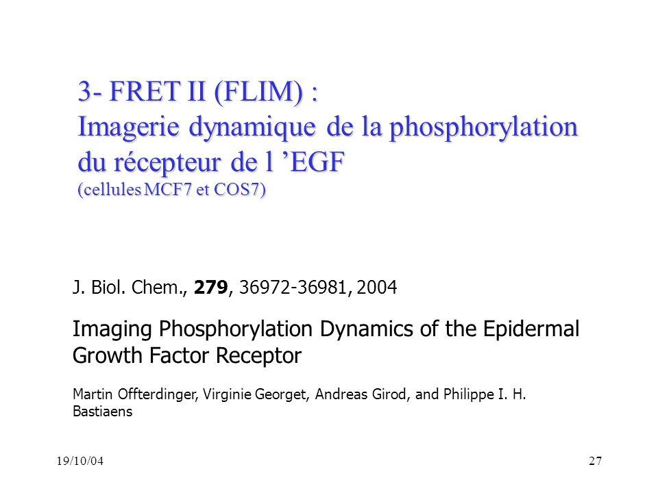 Imagerie dynamique de la phosphorylation du récepteur de l 'EGF