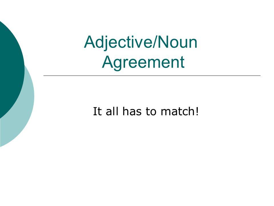 Adjectivenoun Agreement Ppt Video Online Download